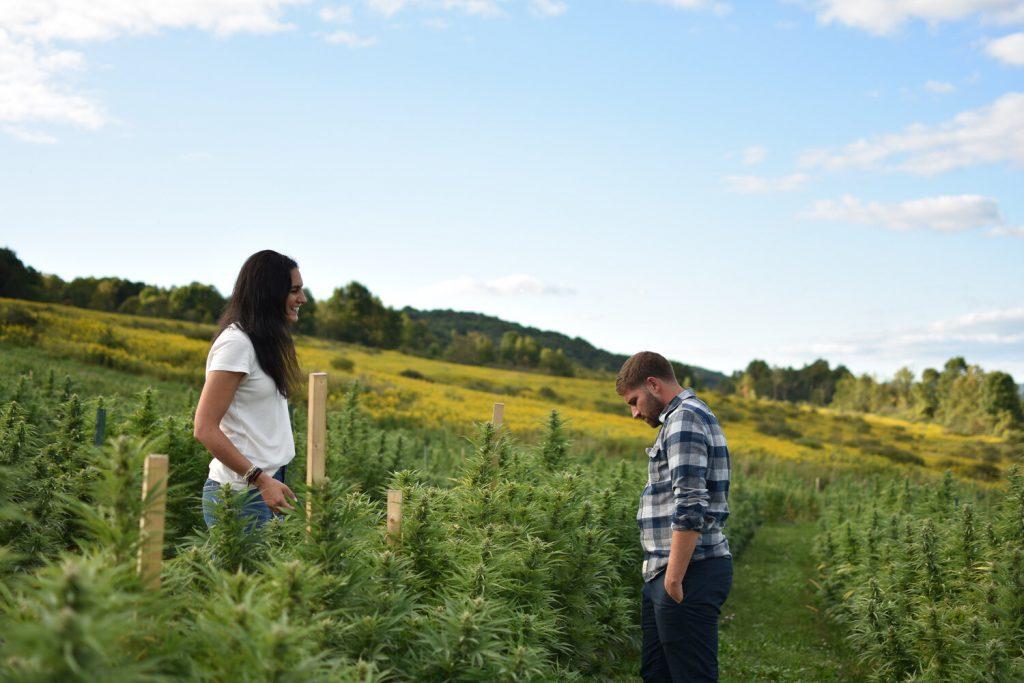 brittany and erik carbone tricolla-farms hemp