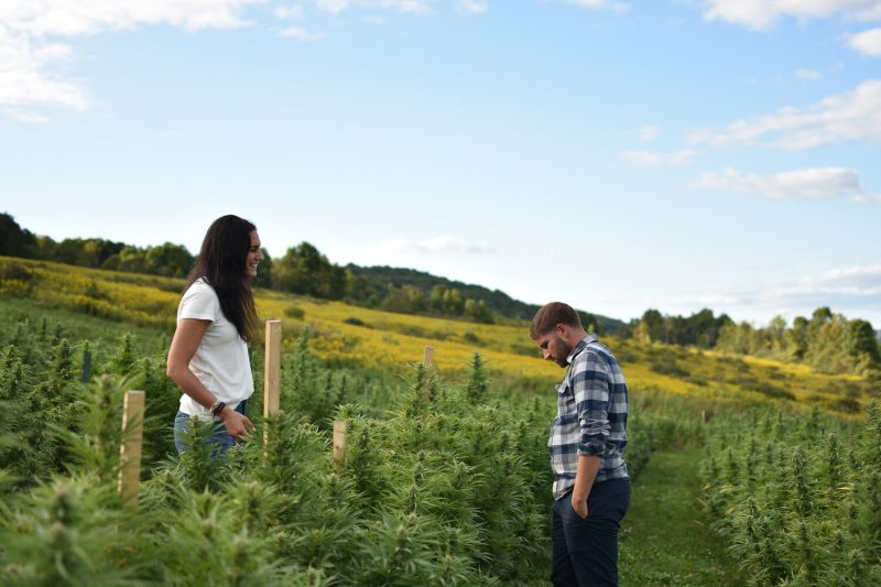 brittany and erik carbone tricolla-farms hemp