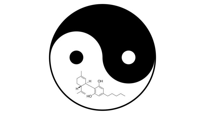 cbd molecule inside of a yin yang - homeostasis and the endocannabinoid system
